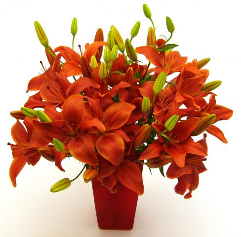 Flower_Delivery_red_lilies.jpg